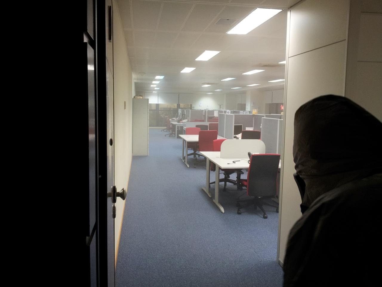 Desinsectación oficinas 2