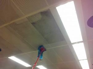 Desinfección de techos