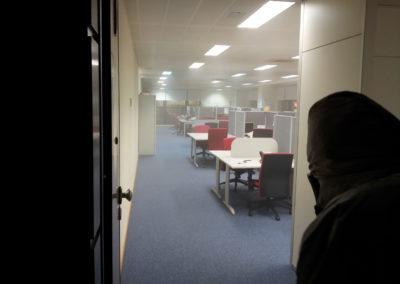 Desinsectación oficinas